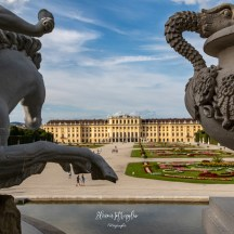 Una visione insolita del palazzo: dietro alla Fontana del Nettuno