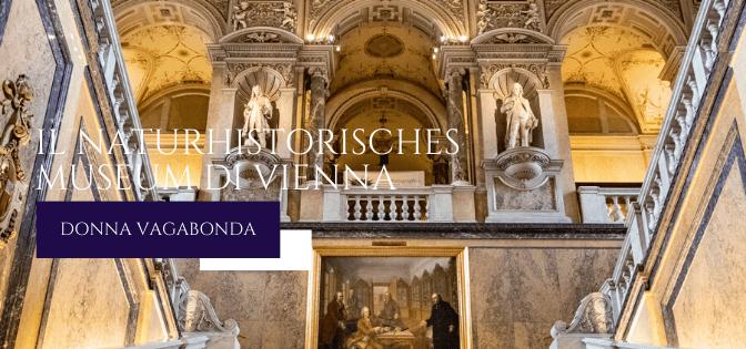 Il Museo del mese di Gennaio: il Naturhistorisches Museum di Vienna