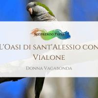 L'Oasi di Sant'Alessio con Vialone