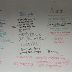 Comparing and contrasting female characters in House on Mango Street.
