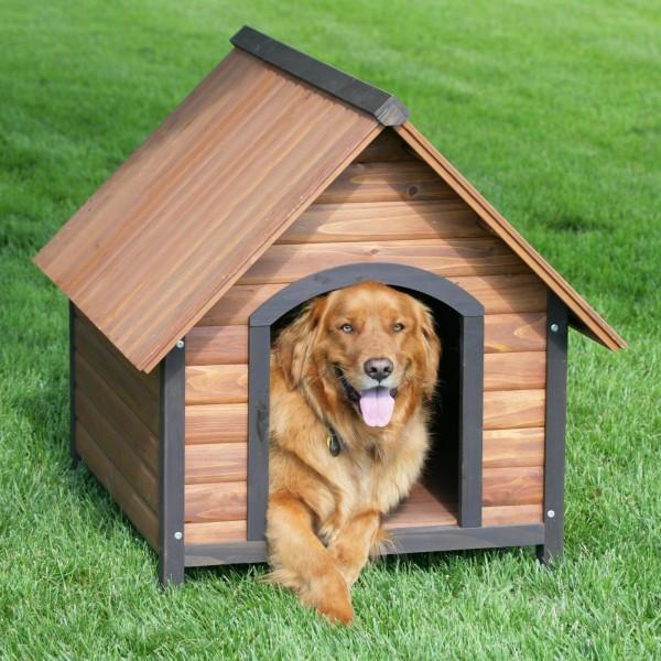 Modelos de casinha para cachorro