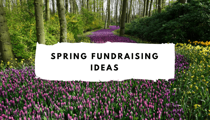 top 10 spring fundraising ideas spring fundraiser events