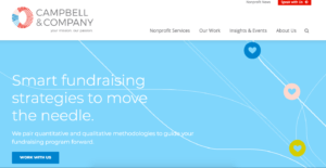 fundraising consulting firm