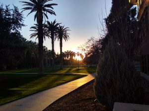 Sunset in the west, just stepped out of the Communications Building at the University of Arizona.