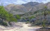 Catalina Dry Wash by Western pastel landscape artist Don Rantz