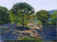 Watson Woods Late Afternoon by Western pastel landscape artist Don Rantz