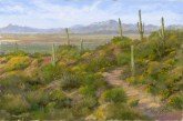 Kitt Peak From the Red Hills 2 by Western pastel landscape artist Don Rantz