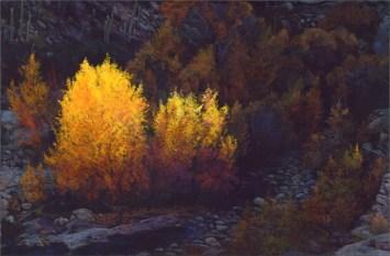 Sabino Canyon Color by Western pastel landscape artist Don Rantz