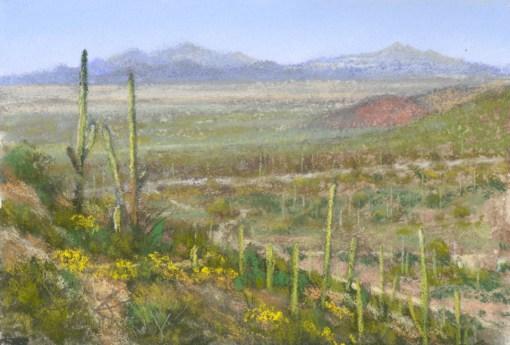 Saguaro National Park 2 by Western pastel landscape artist Don Rantz