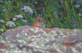 Squarel by Western pastel landscape artist Don Rantz