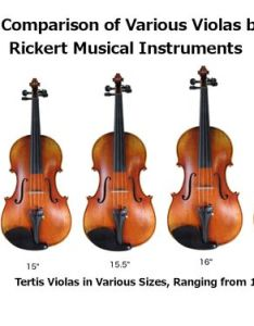 Tertis lineup also pattern violas in sizes and inch at don rh donrickertmusicianshop