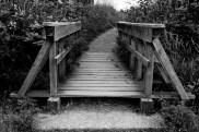 Bridge in Serpentin Fen
