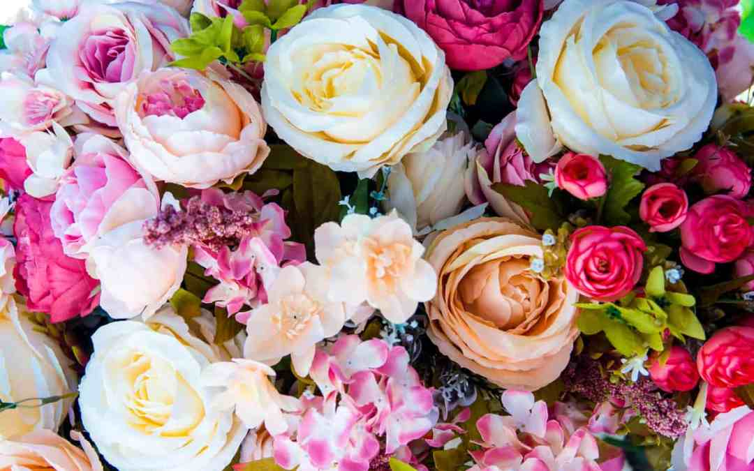 Best Fresh Flowers and Plants for Your Home