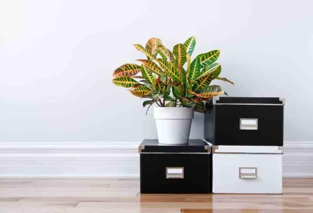 dependable de-cluttering