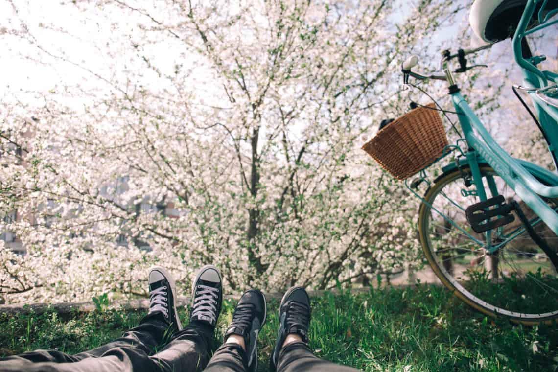 Planning Your Spring Garden In Advance