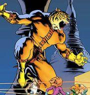 Bronze tiger DC