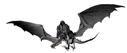 fell beast and ring wraith