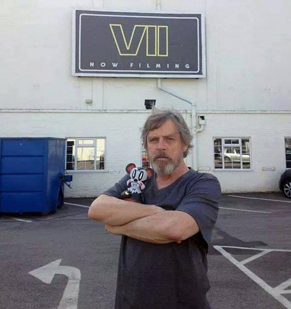 mark hamill jedie beard