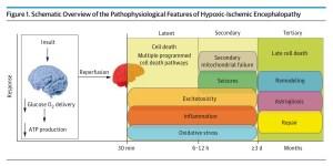 From JAMA Paediatrics 2014