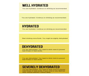 Urine Scale