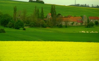 Greenfields of France