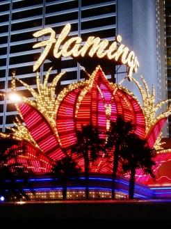 Illuminated Flamingo, Las Vegas
