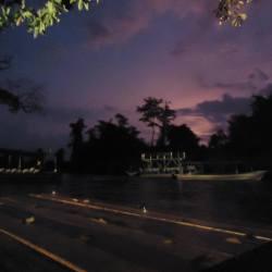 Fireflies in Borneo sunset in Sabah