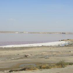 by the pink salt lake masazir