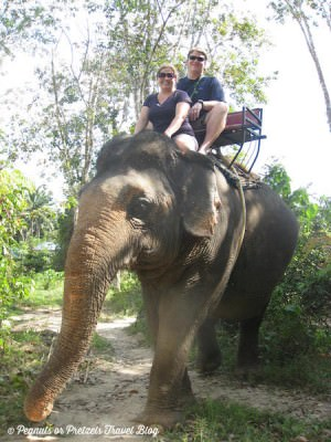 World Travellers: Josh & Liz riding elephants in the jungle in Thailand