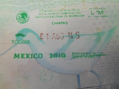 My Mexico exit stamp.