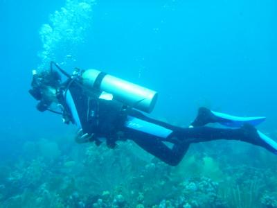 Fun dives in Utila, Honduras.