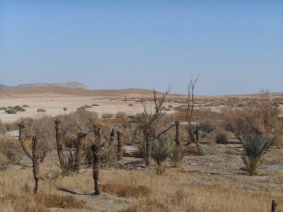 Khalate Talkh Desert Oasis in Iran