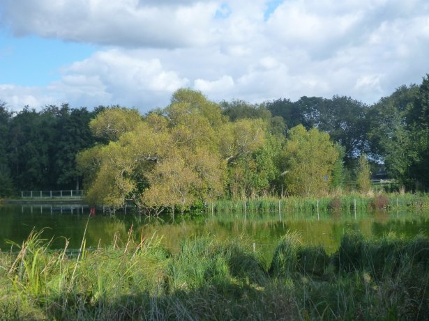 Travelling to the Lagoan Isles in Baffin's Pond, Portsmouth