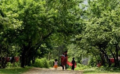 Hiking and Walking near Mai Chau Ecolodge