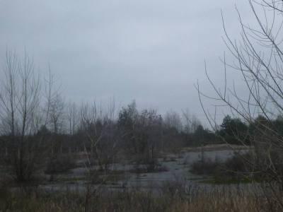 Barren land at Dityatki Checkpoint