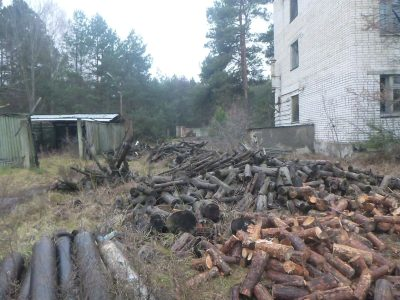 Wood on the walk to the Duga Radars