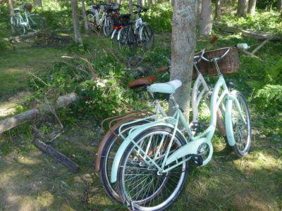 Hiring Bicycles at Słowiński National Park
