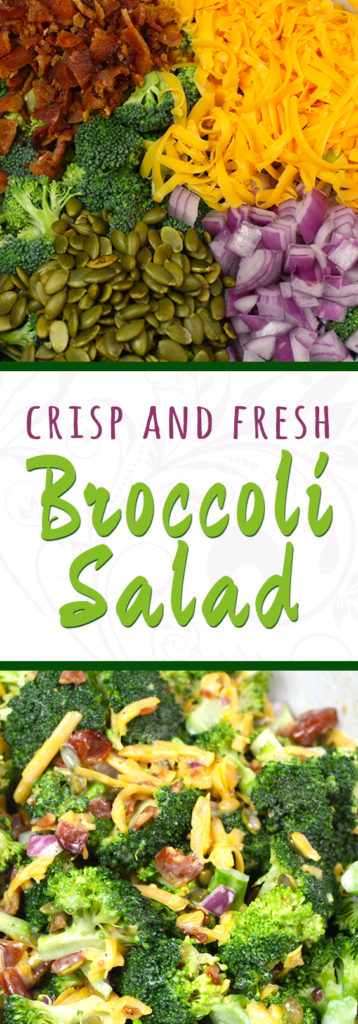 Broccoli Salad - A classic side dish is perfect for summer cookouts and picnics!