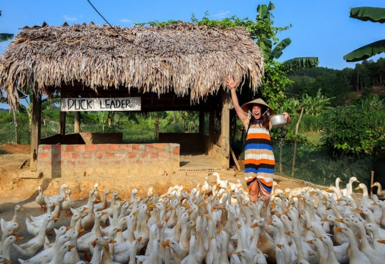 The Duck Stop Phong Nha Vietnam threeland