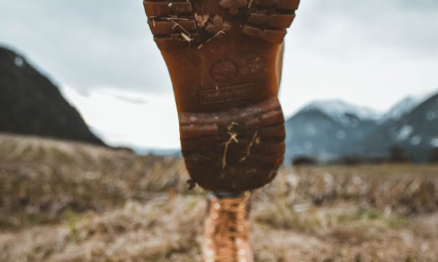 Hanwag Alta Bunion Lady GTX Review