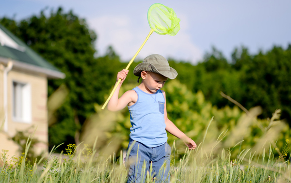 Boy Exploring Long Grass in Summer small