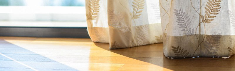 Sunlight creeps along a shining floor, inspired by a line from a poem by William Stafford on focusing on the important things and people in life, especially in the face of grief and loss.