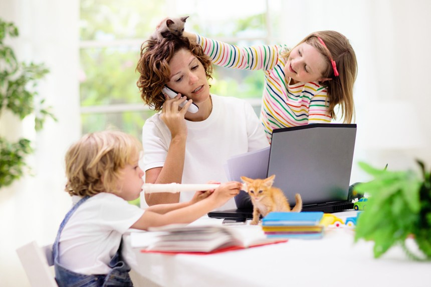 A frazzled mom tries to work from home while being distracted by noisy kids and pets. How will parents help their kids to avoid the COVID academic slide this school year?