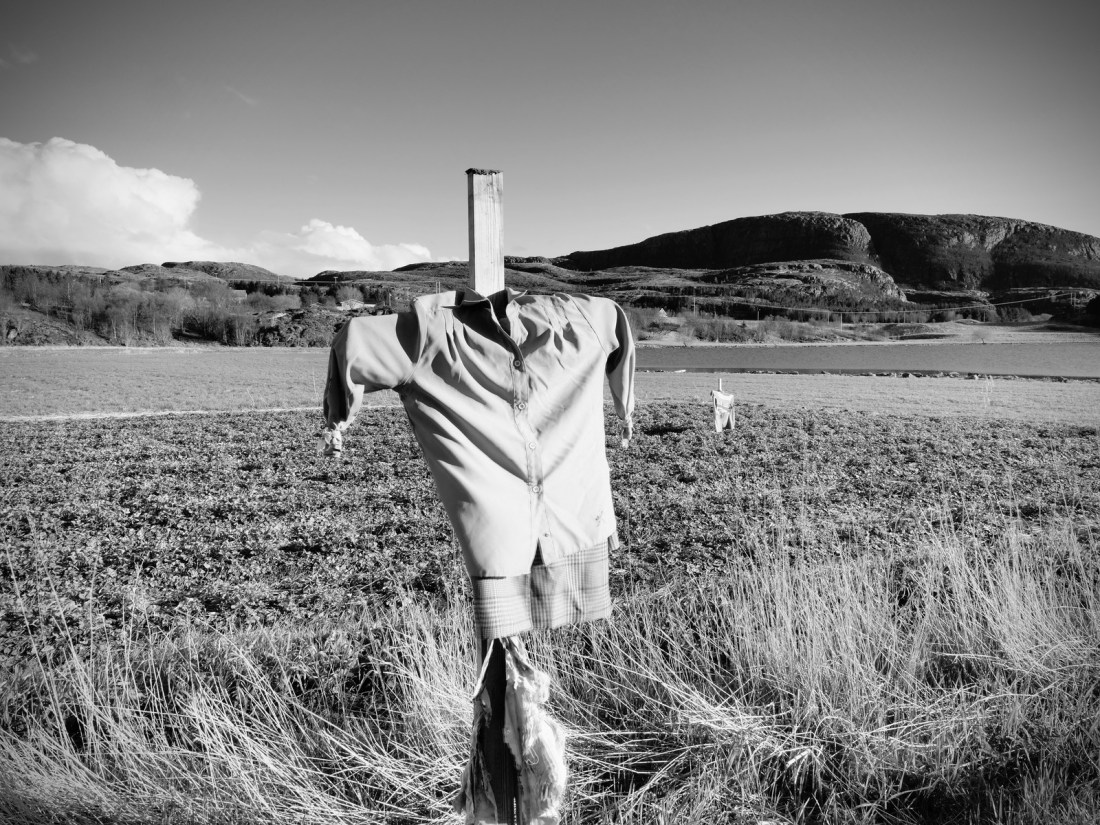 A black and white photo of a field in South Dakota featuring a scarecrow created by an old shirt and some shorts draped over wooden stakes. How can the Dakota landscape help inspire us with ideas for coping during covid?