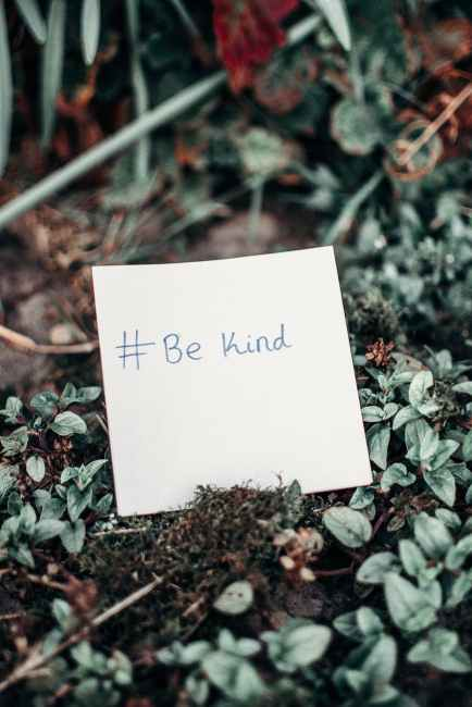 A little note among small plants that says hashtag Be Kind. Dyslexia anxiety in the workplace can be mitigated by learning to have a kinder internal dialogue.