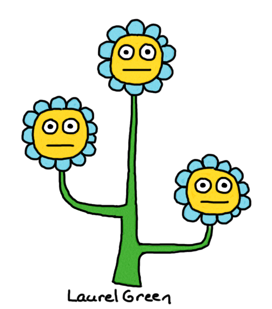 a drawing of a weird, three-pronged flower