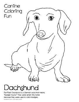 doodles-canine-coloring-fun-2