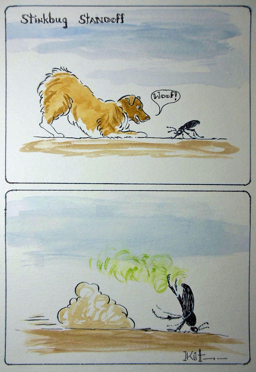 Stinkbug Standoff by Kit Schuetze