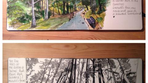 Parks of Plymouth UK by Sarah Smalldon