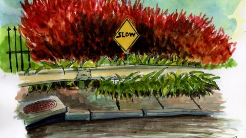 Slow Down by Philippe Noguera